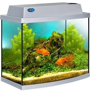 akvarium-biodesign-klassik-30r