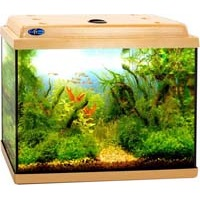 настольные аквариумы купить