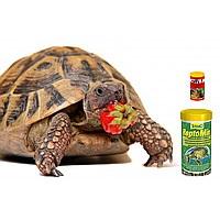 Корма для черепах купить в интернет магазине