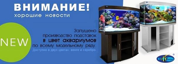 интернет-магазин аквариумов и аквариумного оборудования. Минск Беларусь