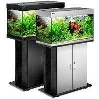 аквариумы в могилеве