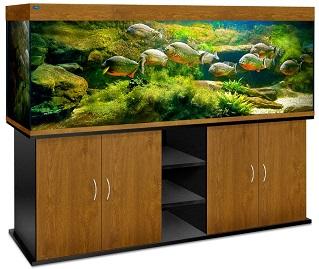 аквариум купить в могилеве