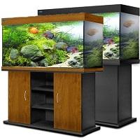 крупные аквариумы