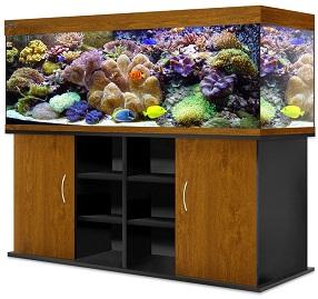 купить аквариум в витебске
