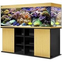 аквариумы в бресте