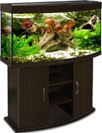 Аквариум Биодизайн Панорама 240