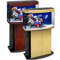 аквариум 100
