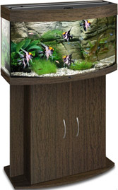 Аквариум Биодизайн Панорама 80