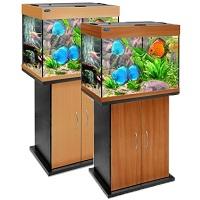 аквариумы в минске фото
