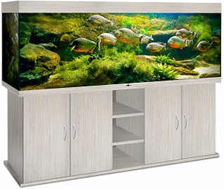 akvarium_biodizayn_atoll_1000_belenyy_dub