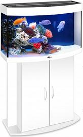 akvarium_biodizayn_panorama_100_belyy