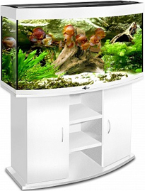 akvarium_biodizayn_panorama_240_belyy
