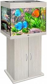 akvarium_biodizayn_rif_100_belenyy_dub