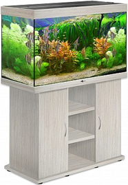 akvarium_biodizayn_rif_250_belenyy_dub