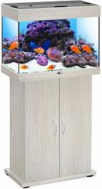 akvarium_biodizayn_rif_60_belenyy_dub