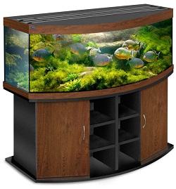аквариум большой