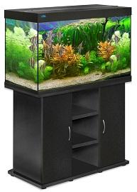 аквариумы в гродно