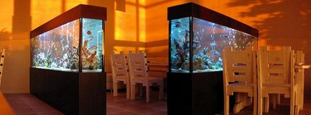 аквариум на заказ цена