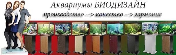 преимущества аквариумов биодизайн