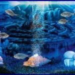 Ракушки в аквариуме: можно ли ракушки в аквариум?