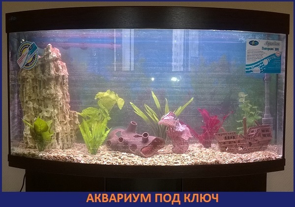 akvarium-pod-kluc