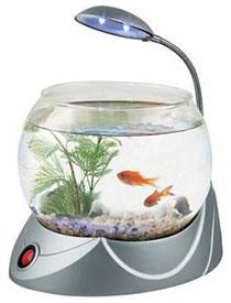 аквариум круглый купить