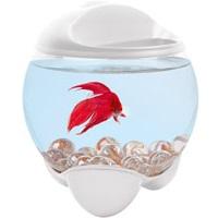Круглый аквариум купить маленький
