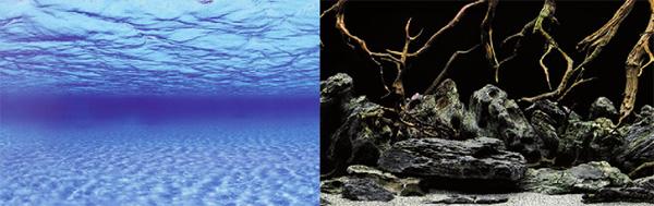 Аквариумный фон Barbus Sea Scape/Natural Mystic