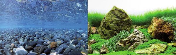 Фон двусторонний для аквариума купить Hagen River Rock/Sea of Green