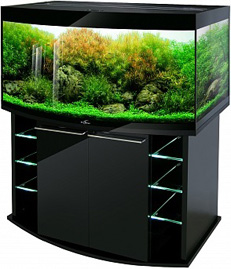 Аквариум Биодизайн Crystal Panoramic 310 черный суперглянец