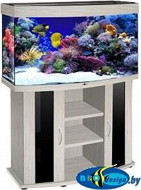 купить аквариум беленый дуб