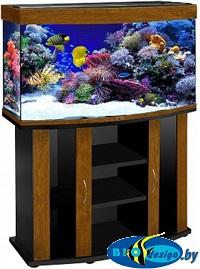 купить аквариум золотой дуб