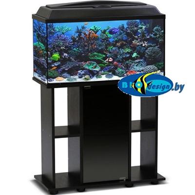купить аквариум прямоугольный AquaElement от 5 до 200 литров