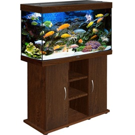 купить аквариум Биодизайн Риф 200 золотой орех
