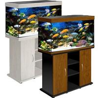 купить аквариум Биодизайн Риф 200