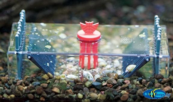 Sera Snail collect ловушка для улиток в пресноводных аквариумах