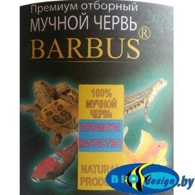 купить Мучной червь barbus 1 литр (расфасовка)