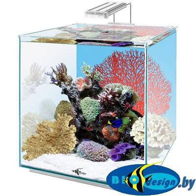 купить аквариум настольный куб Биодизайн в Минске