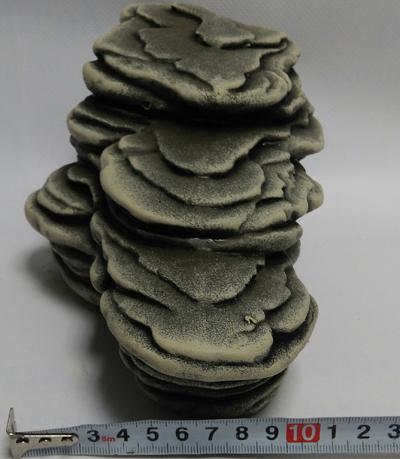 Камень для террариума: Подставка для черепах большая суша К-26с серый