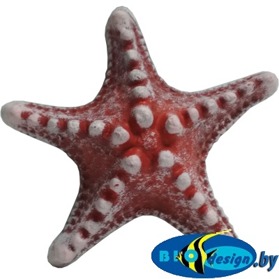 Звезда малая (красный) К-01к