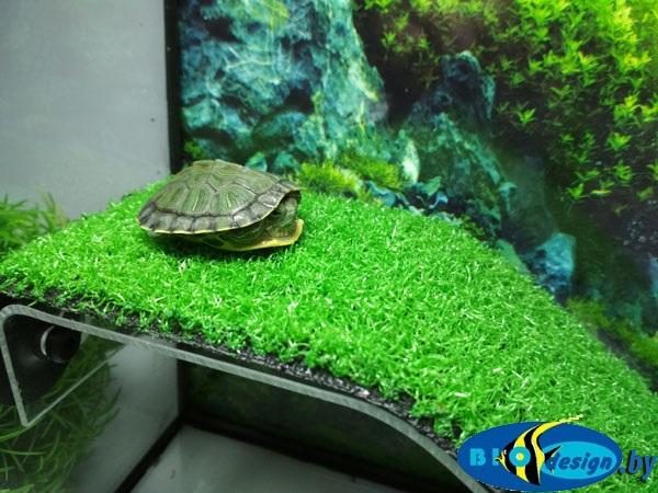 Палюдариум-1 GREEN для черепах (комплект)