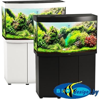 аквариумы панорама
