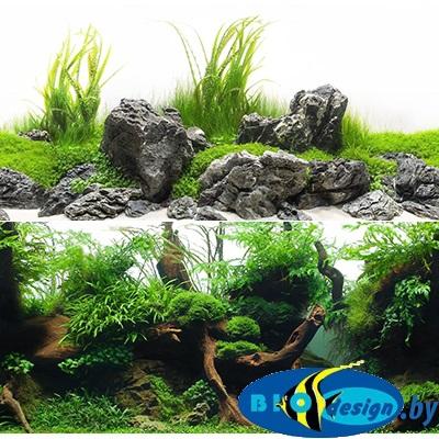 Фон аквариумный Barbus 042: Зеленый рай. Воды амазонки, двухсторонний, 60 х 124 см